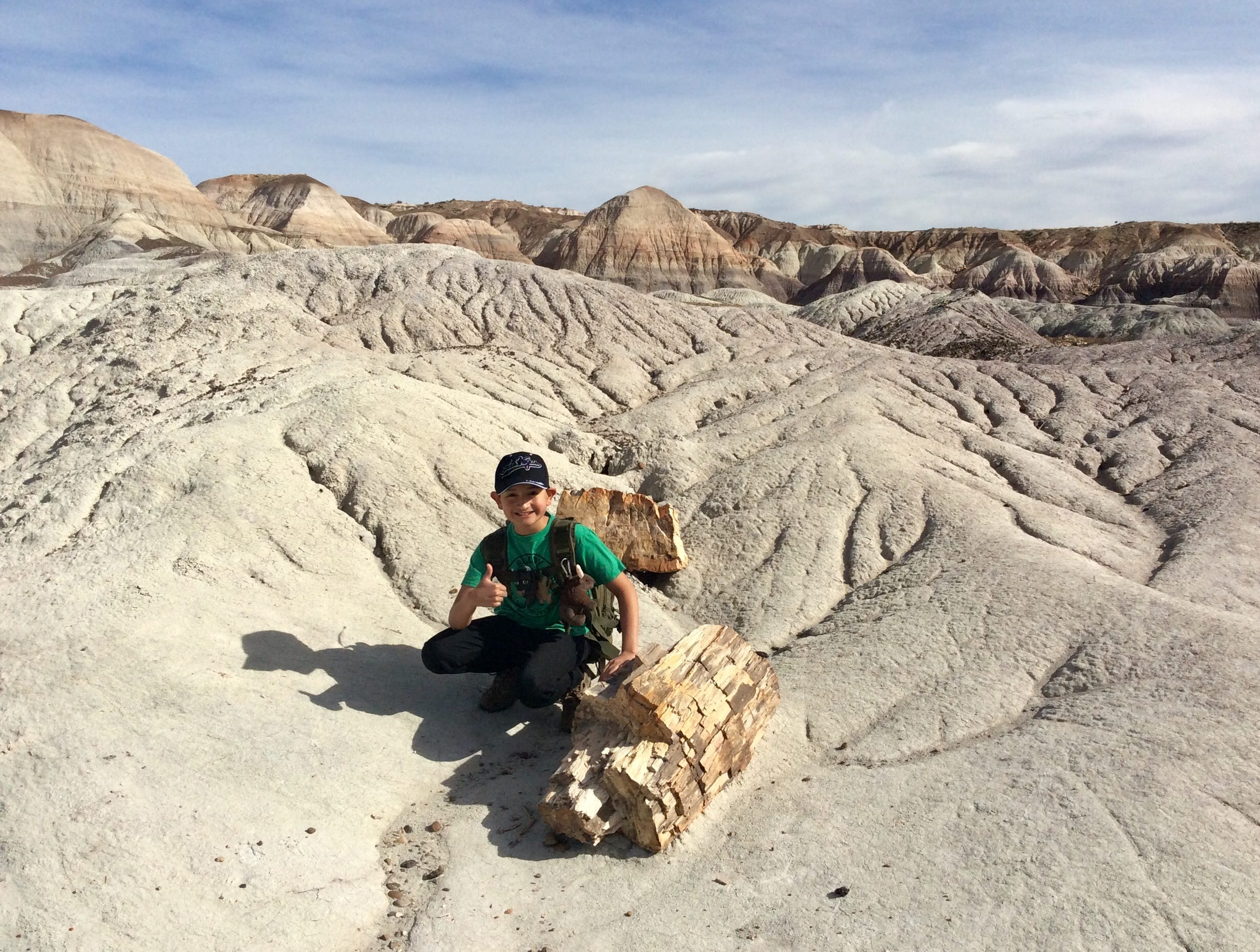 Bryan Wilson, 12, at Petrified Forest National Park.