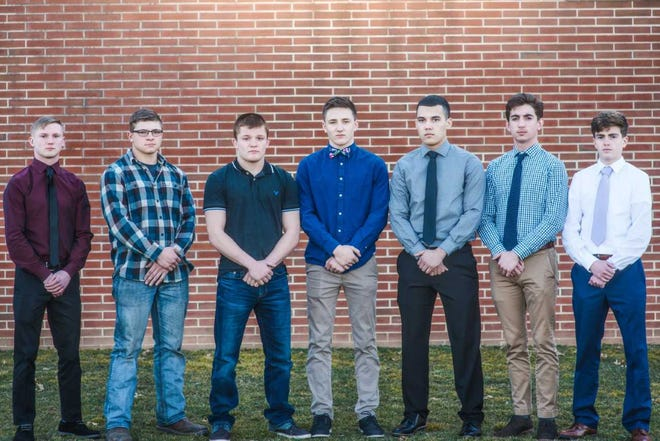 Wrestlers earning Lancaster-Lebanon League first team section all-star honors from Lebanon County were, from left, Colin Leonard- Northern Lebanon, Trey Donmoyer- Elco, Ethan Herb - Northern Lebanon, Nick Winters- Northern Lebanon, Dallin Ocasio - Lebanon, Hayden Funck- Annville-Cleona, and Matt Inman- Annville-Cleona.  Missing from photo: Brandon Breidegan Northern Lebanon, Nick Goodyear Northern Lebanon, Adam Firestine, Elco.