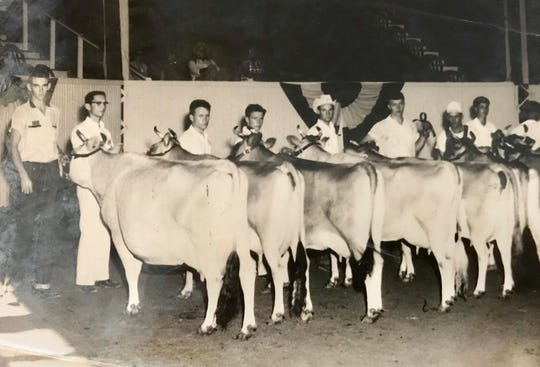 A young James Mac Case, far left, and his cow June, at the 1954 Missouri State Fair in Sedalia in 1954.  June, based solely on her good looks, was named Grand Champion and  later that year was on display in the Heer's Department Store.