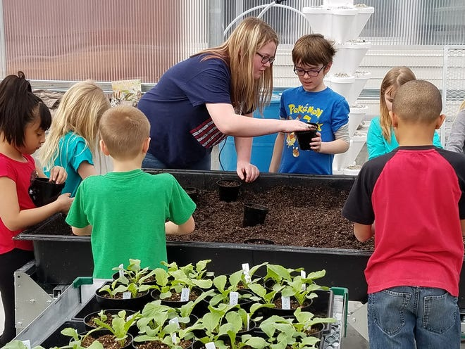 Cassidy Van Buren, an agriculture student at Waupun High School, showed SAGES students how to plant seeds in a potting mix.