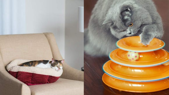 20 things cat lovers are obsessed with on Amazon