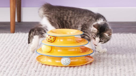 This roller ball toy is a great way to keep cats stimulated throughout the day.