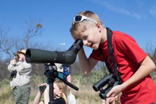 Owen Crawford looks at a Pyrrhuloxia, a relative of the cardinal, through the scope.