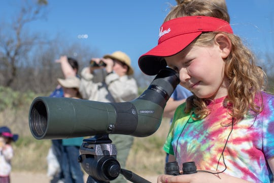 Avonlea Condra looks at a Pyrrhuloxia, a relative of the cardinal, through the scope.