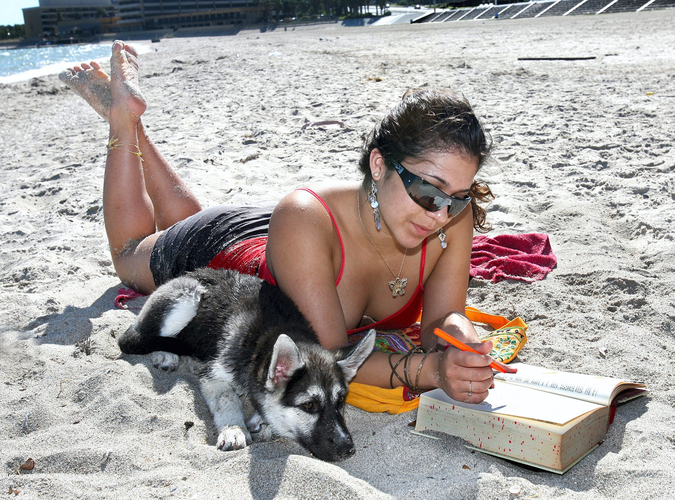 Del Mar Architectural Engineer freshman, Amanda Tamez, studies for test with her 11-week-old Husky, Roxanne on McGee Beach in downtown Corpus Christi in October 2008.