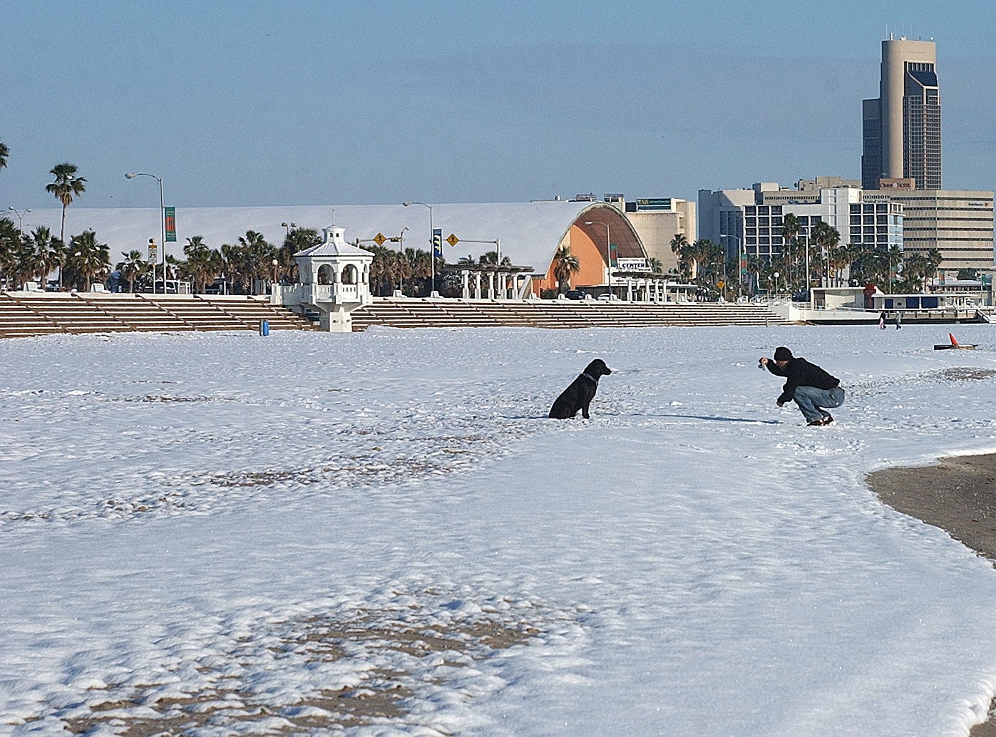 One lone walker took a photo of his dog in the snow on McGee Beach in downtown Corpus Christi on Dec. 25, 2004 following the Christmas snow.