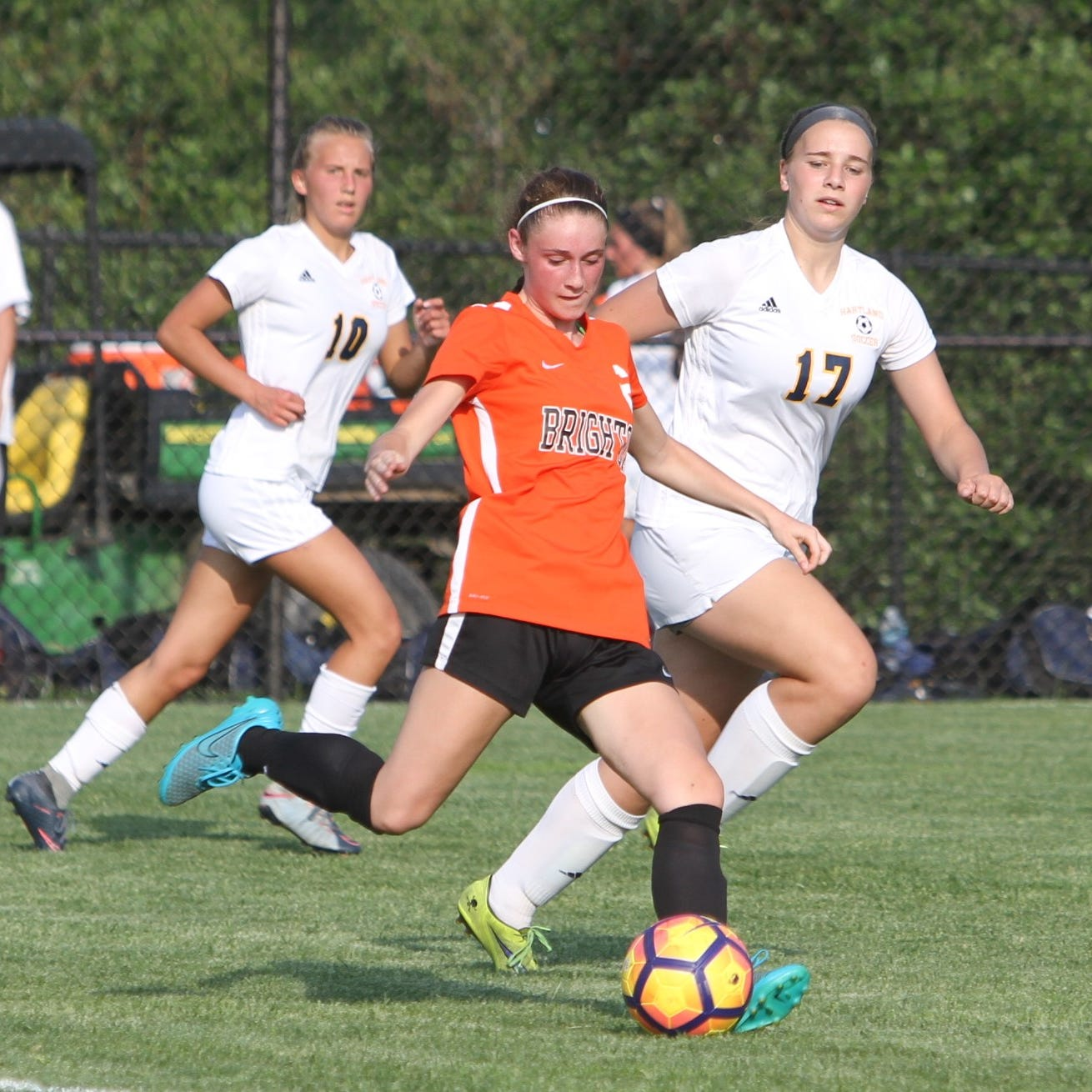 A look at Livingston County's 2019 girls soccer teams