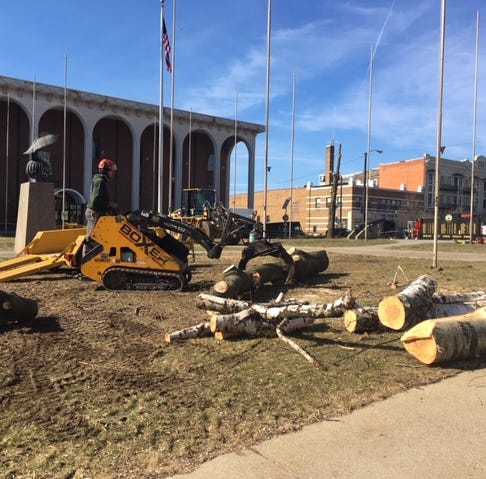 Vigil planned Friday to protest felled trees outside courthouse