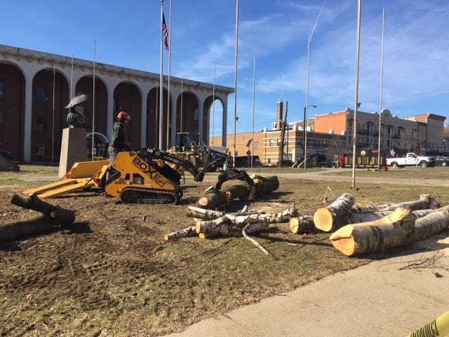 Trees were cut down outside the Richland County Courthouse due to safety concerns and to make way for a planned landscaping redesign with the placement of a new Gold Star Family Memorial Monument.
