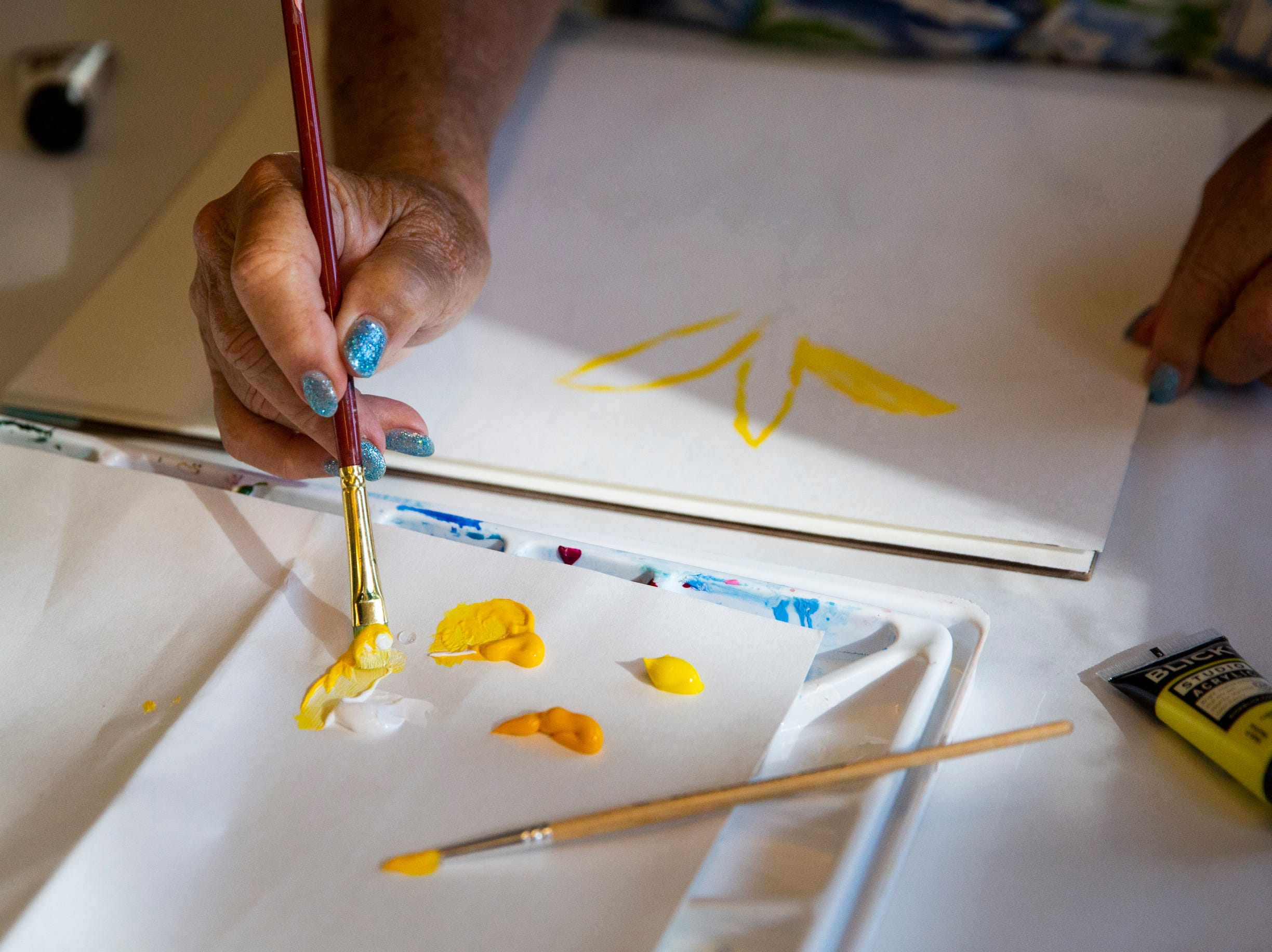 Barbara Richardson starts a painting during an oil and acrylic painting class at the Naples Art Association in Naples on Wednesday, March 27, 2019. Richardson says she has taken almost a dozen classes through the Naples Art Association over the past few years.