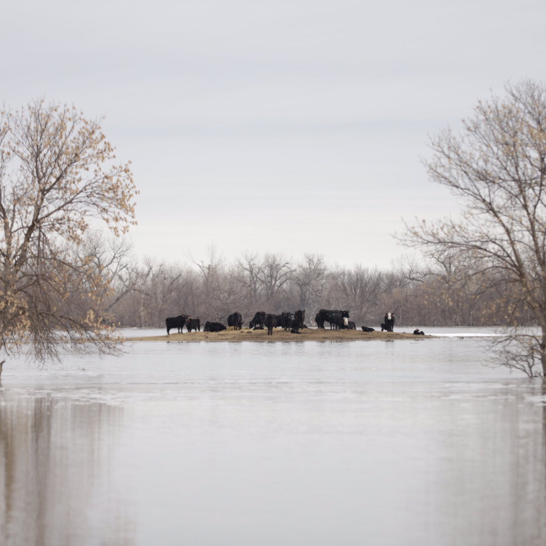 Cheyenne River Sioux Tribe officials declare emergency, evacuate by helicopter from flooding