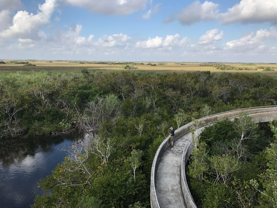 Everglades National Park is the third largest national park in the lower 48 states, but it can be explored in a day by booking a tram tour, eating Native American food and taking an airboat ride.