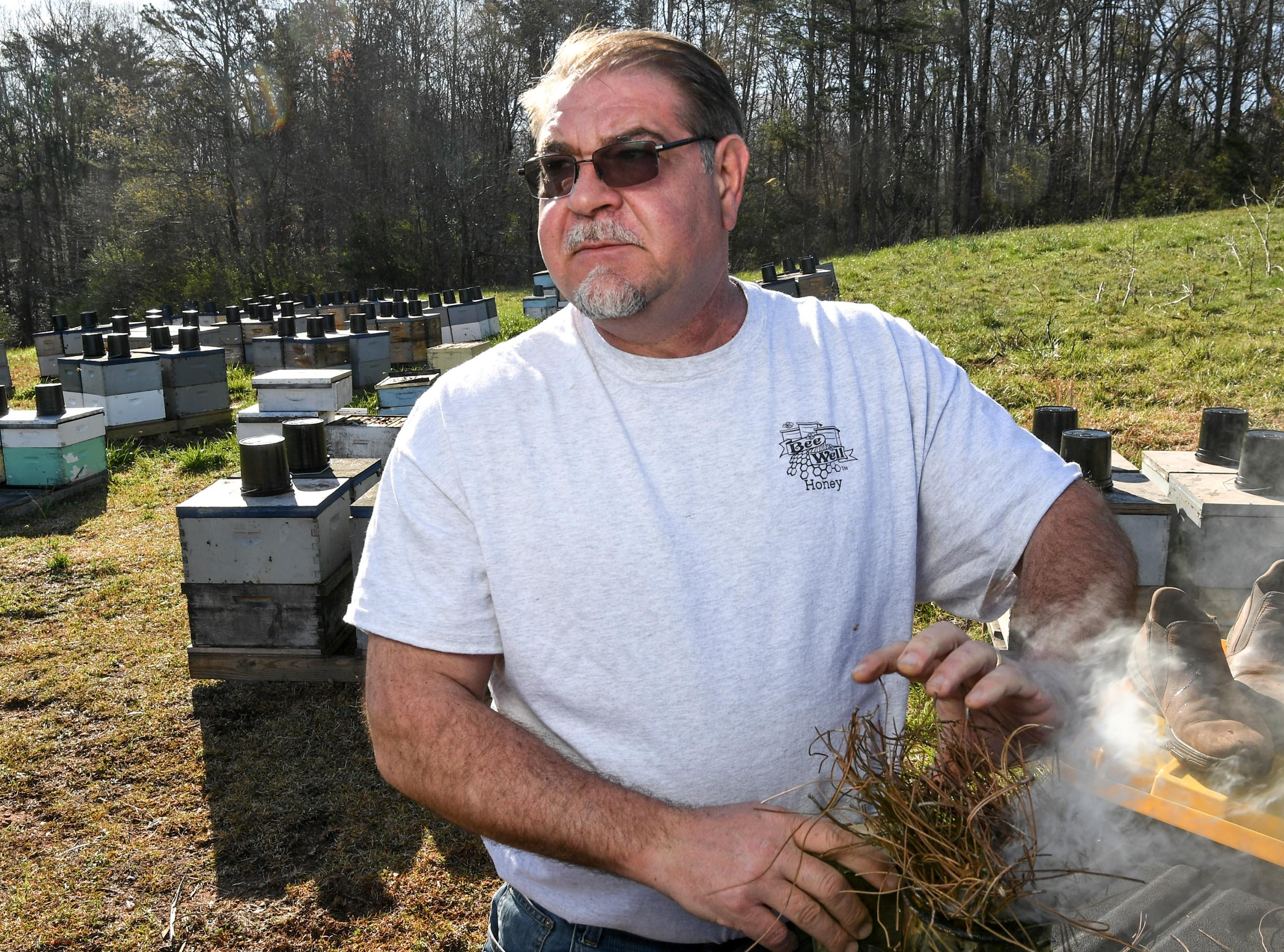 Kerry Owen, owner of Bee Well Honey in Pickens looks over bees at the Kaplan farm in Pickens Thursday.