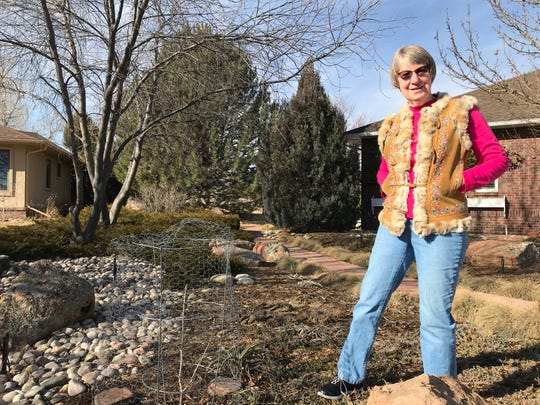 Carole Salman stands in front of her home in Larimer County, just outside Fort Collins' northwest city limits. She has received considerable damage to her landscape by deer this year.