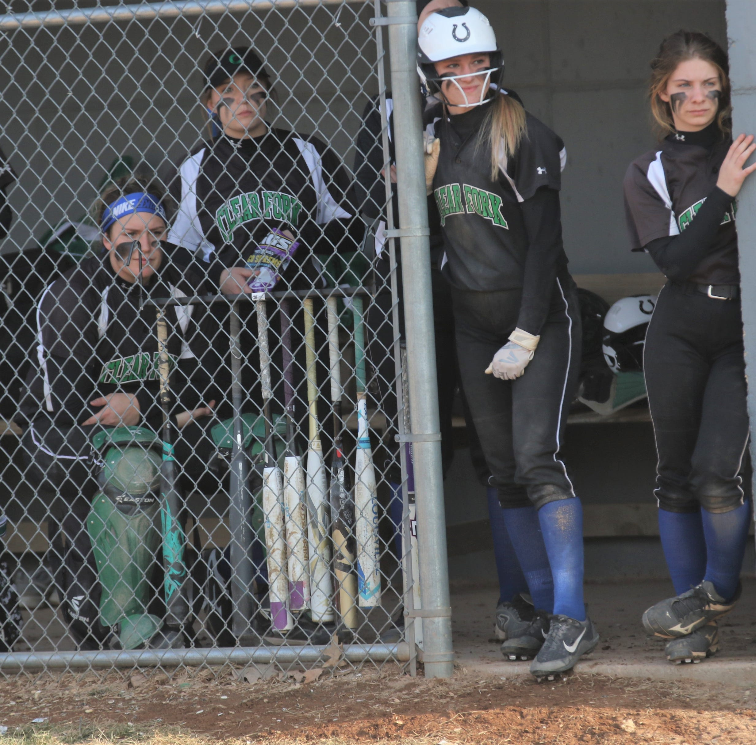 Richland County Softball Power Poll: 5 undefeated teams make it crowded at the top