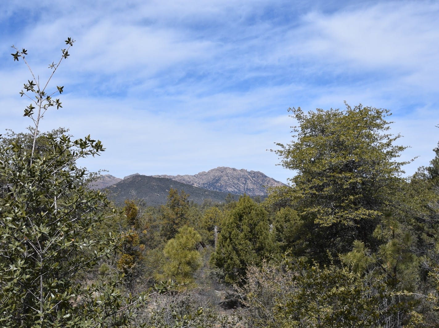 Granite Mountain seen from the Firewater Trail.