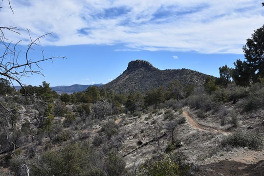 The Javelina Trail passes by Thumb Butte.