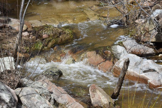 The South Fork of Willow Creek spills over the Javelina Trail.