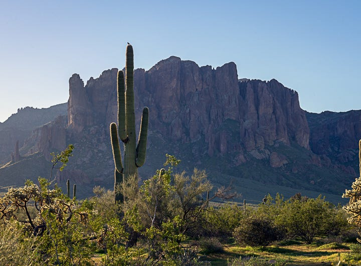 A Sunday morning from the Lost Dutchman State Park
