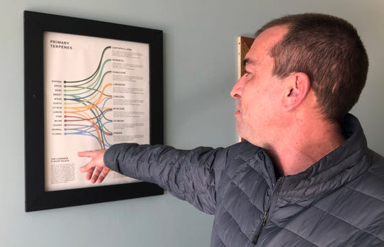 Tobi Brechbiel, owner of Your CBD Store in Chambersburg, talks about how CBD works within the human body the morning of Jan. 15, 2019. He said he has seen CBD help customers in different ways, including those with anxiety and cancer.