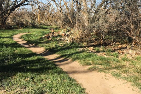 A trail at the San Angelo State Park.