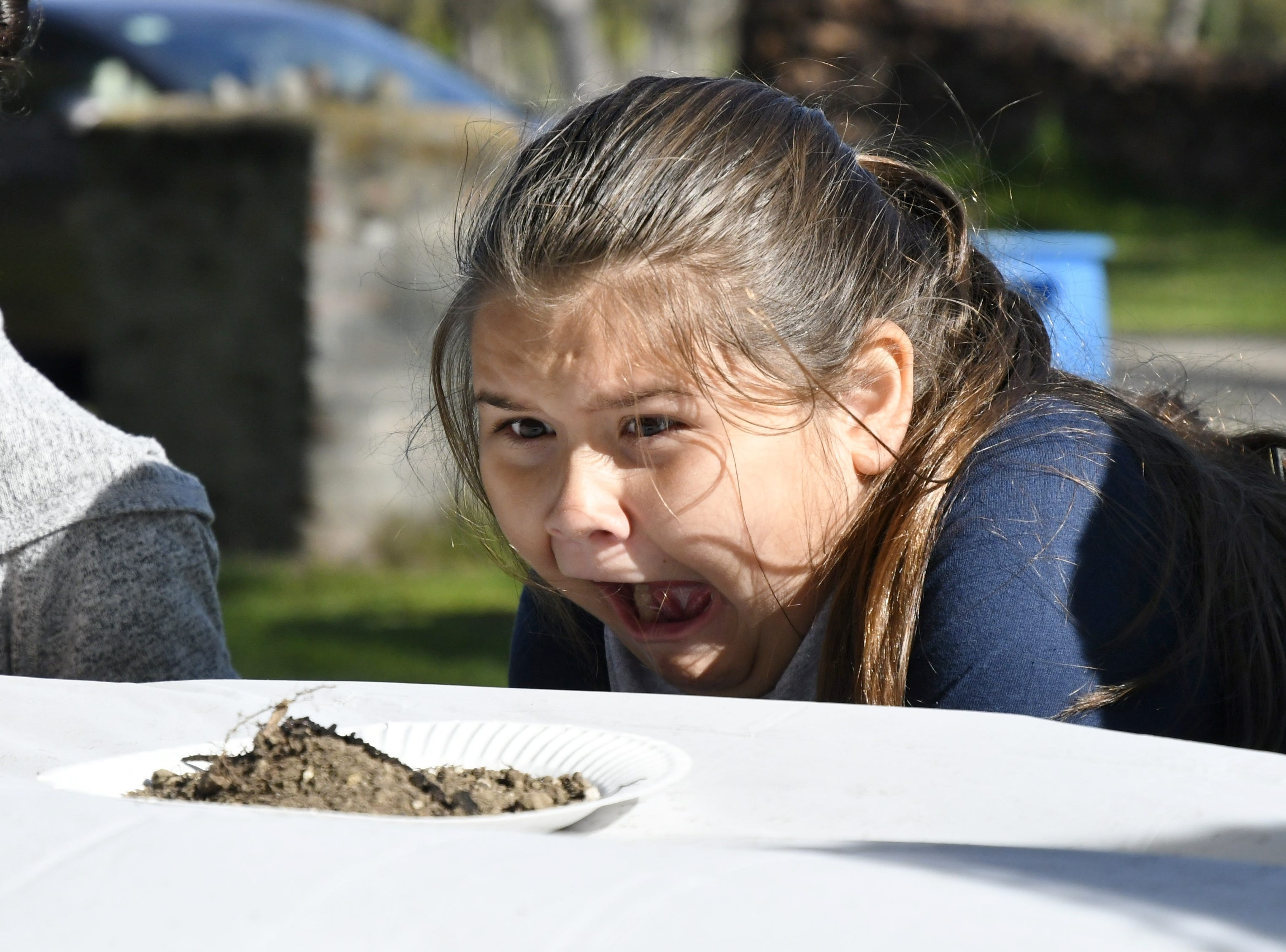 Liberty Elementary fourth grader Chloe Porter, 10, reacts to seeing a worm at TCOE's Arbor Day event at Mooney Grove Park on Thursday, March 28, 2019.