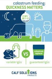 Learn some real life calf feeding scenarios.