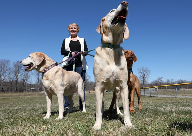 Lori Gaitten is the founder PAWS, Perry Animal Welfare Society, which helps take care of discarded pets and animals.