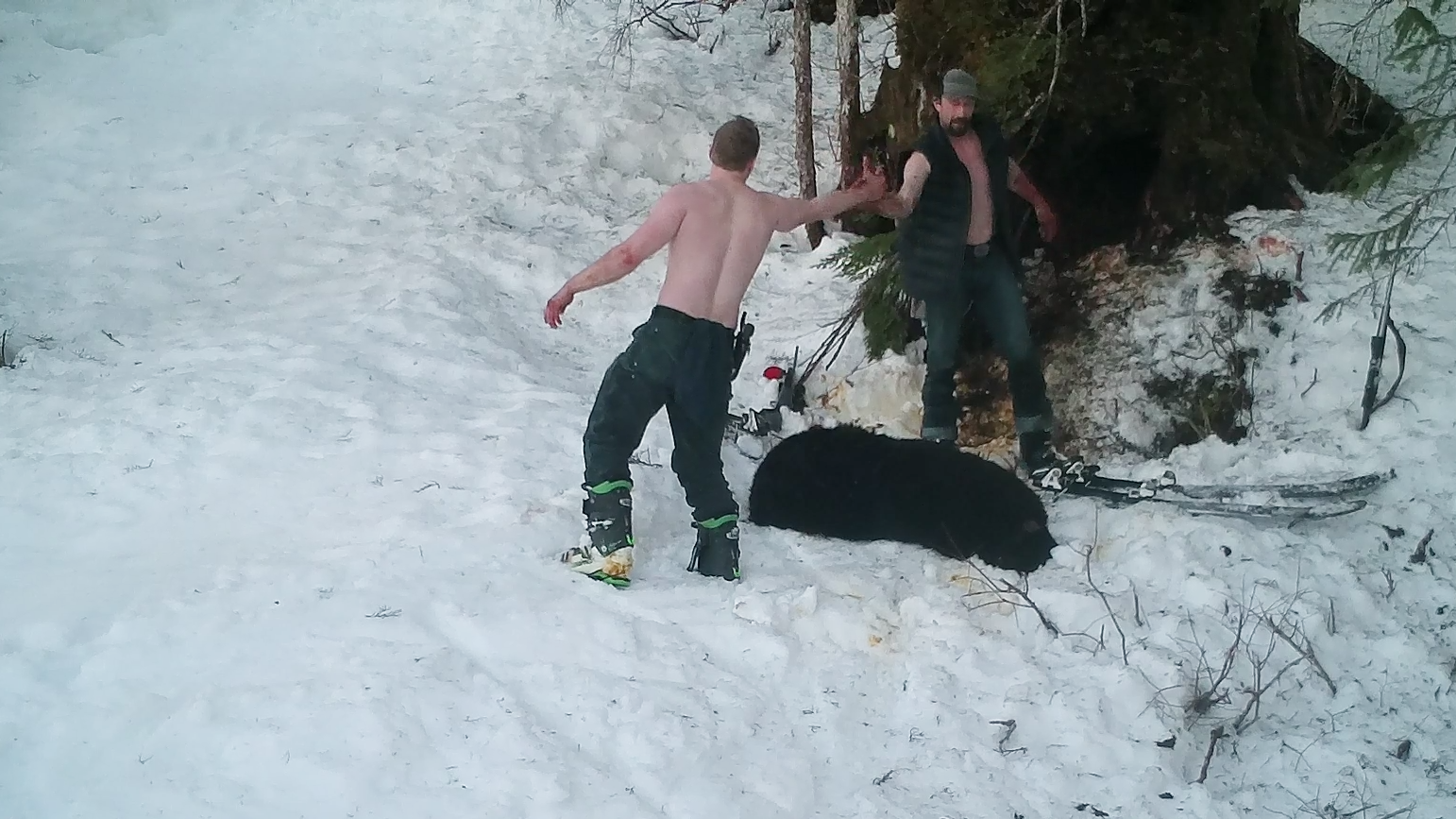 18f06a8e Video of father and son illegally killing mama bear, shrieking cubs  released in Alaska