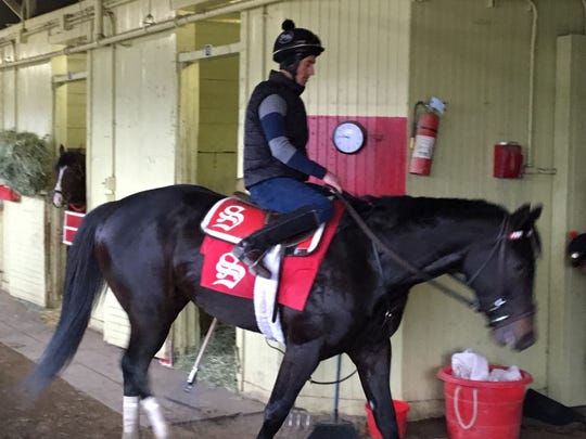 Joevia walks in barn at Belmont Park after working four furlongs on Friday.