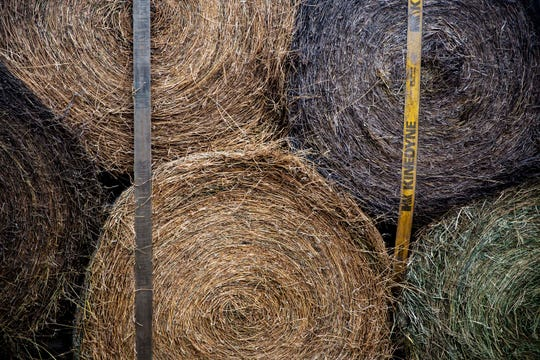Unprotected hay is less palatable, so intake is often reduced. Mold growth can also be a huge problem. If a farmer has ever witnessed a cow herd eating a barn stored bale versus one that's been left outside to weather, it's painfully obvious just how much of that weathered bale is wasted.