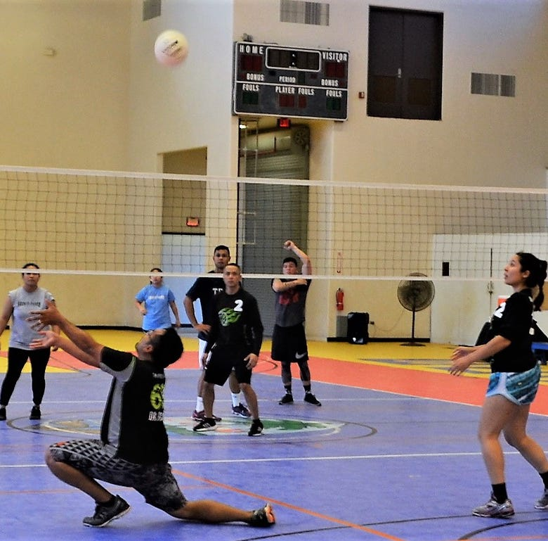 Volley for Cause starts this weekend