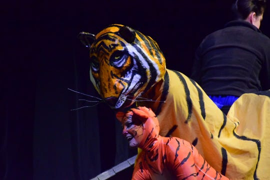 "Lisa McLeod as Cuddles the baby tiger with Kevin Horn and Sarah Margaret Hutchison manning the adult tiger puppet, Snuggles. Dragonfly Aerial and Circus Arts Studio performed ""Dominion"" at Pellissippi State's Clayton Performing Arts Center. March 24, 2019"