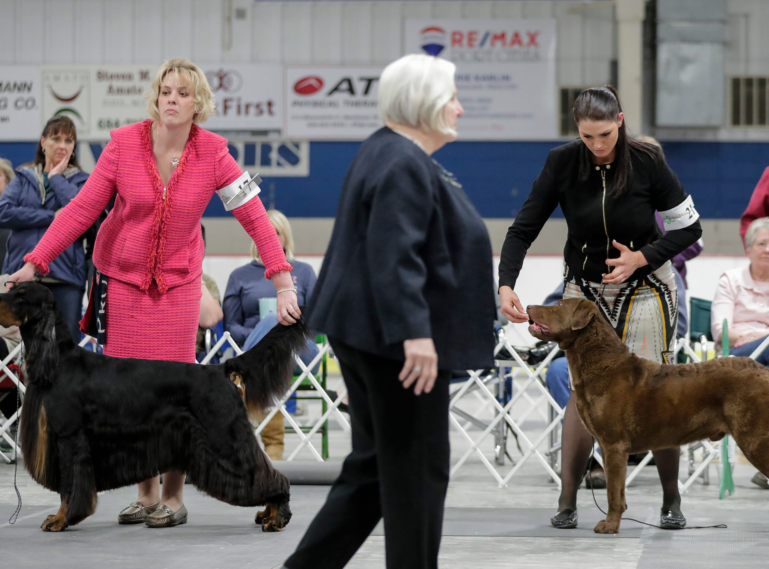 Handlers show their dogs to the judge in the sporting group show during the Northeast Wisconsin Dog Show Classic at the Manitowoc County Expo Center Thursday, March 28, 2019, in Manitowoc, Wis. Joshua Clark/USA TODAY NETWORK-Wisconsin