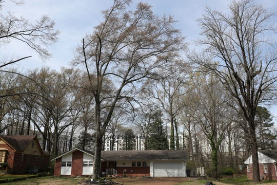 The Guest House at Graceland is seen rising behind residential houses on Old Hickory Road in Whitehaven on Friday, March 29, 2019.