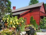 Monches Farm, a pastoral garden center near Holy Hill, is closing