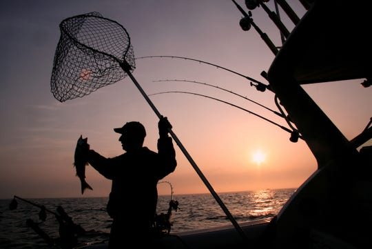 Jim Mueller lands a coho salmon shortly after sunrise while fishing in early spring in 2010 on Lake Michigan off Racine.