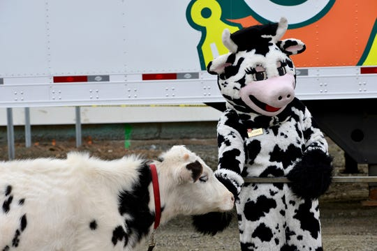 Stew Leonard's held a ground breaking at Paramus Park Mall in Paramus on Friday March 29, 2019. There were three calves brought and champagne flutes filled with milk to toast the occasion. Wow the Cow was also on hand.