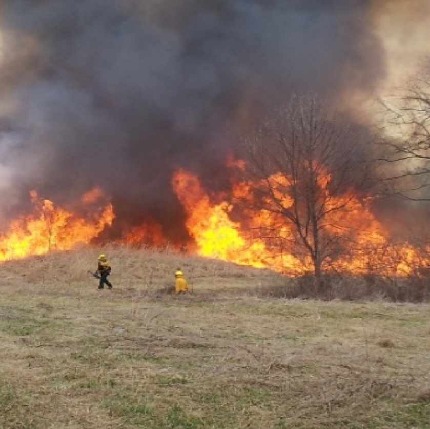 Pa. Game Commission to conduct controlled burn in York County