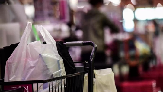 Wegmans dumping plastic bags ahead of New York statewide ban