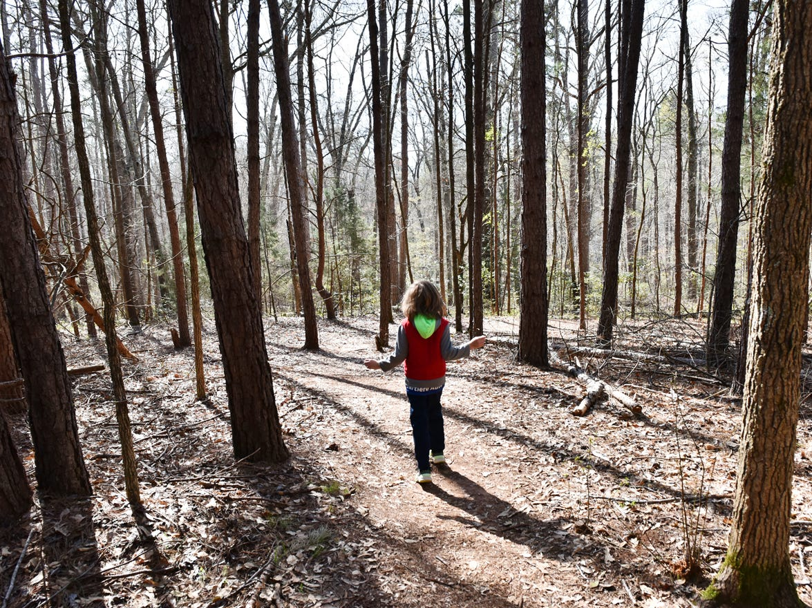 A young boy skips down a trail during the Knee High Naturalists program at Lake Conestee Nature Park on Friday morning, March 29, 2019.