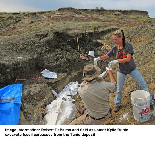 Robert DePalma and field assistant Kylie Ruble excavate fossil carcasses from the Tanis deposit in North Dakota.