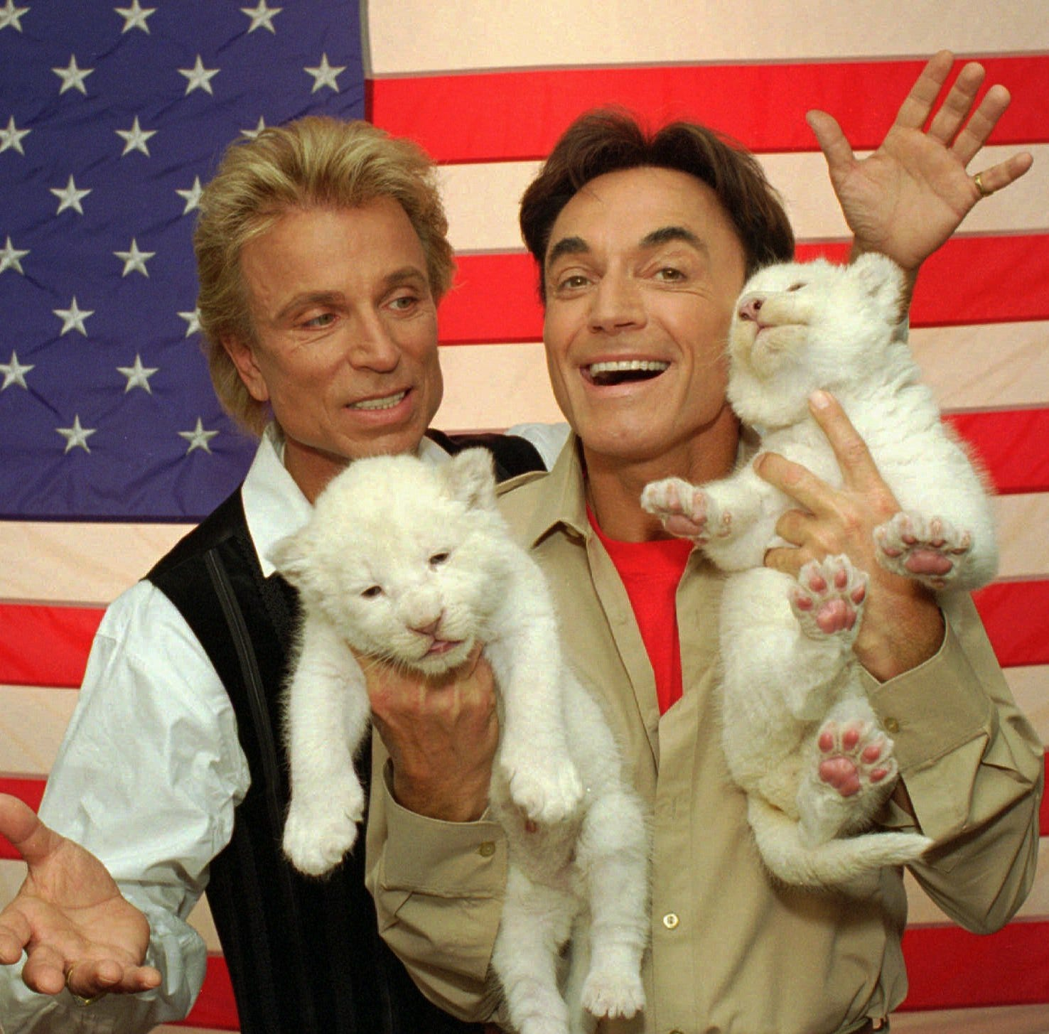 Siegfried & Roy tiger handler says the real cause of 2003 mauling was covered up