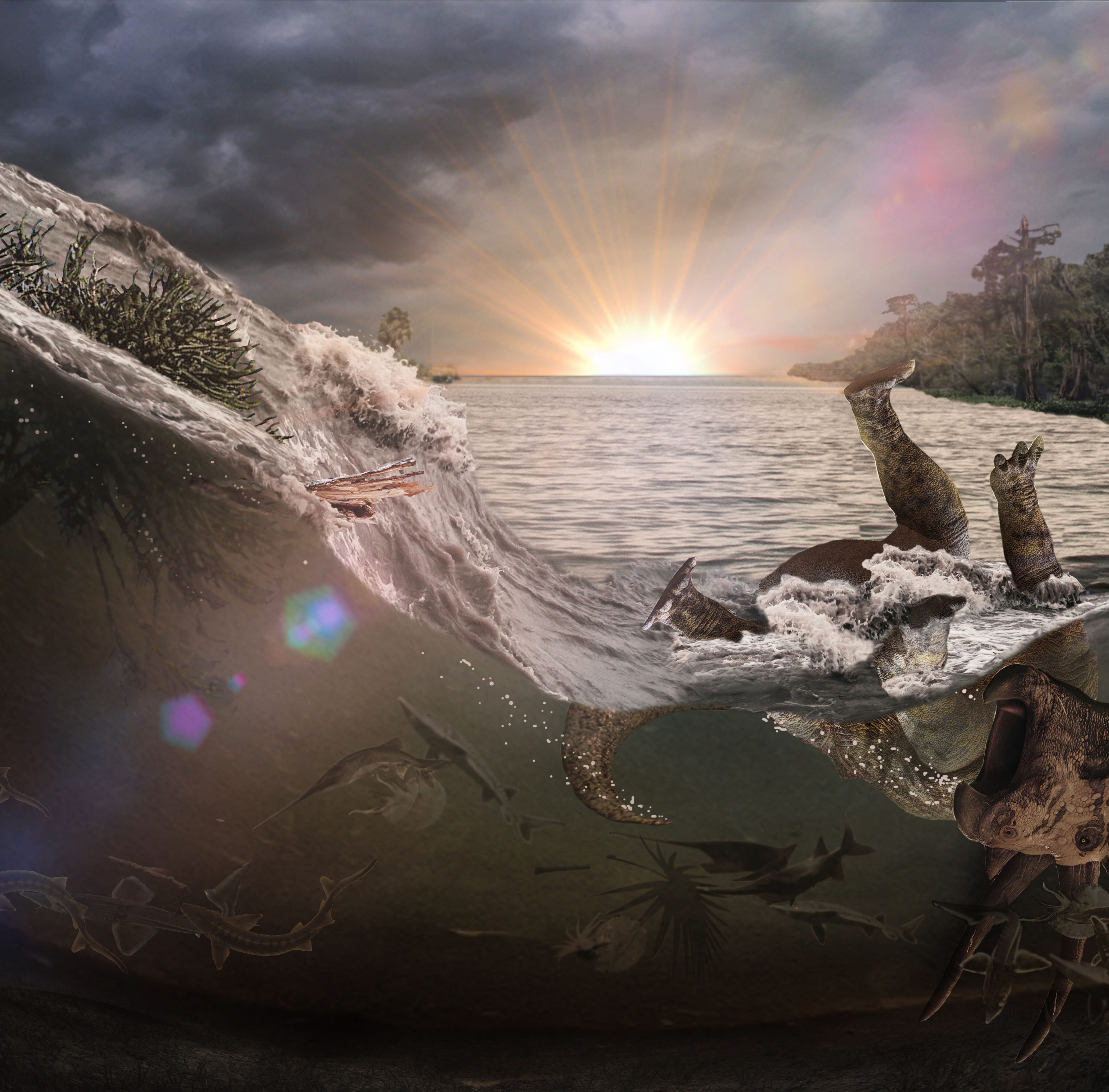 Fossils discovered from the day the dinosaurs died 66 million years ago, when an asteroid hit the Earth