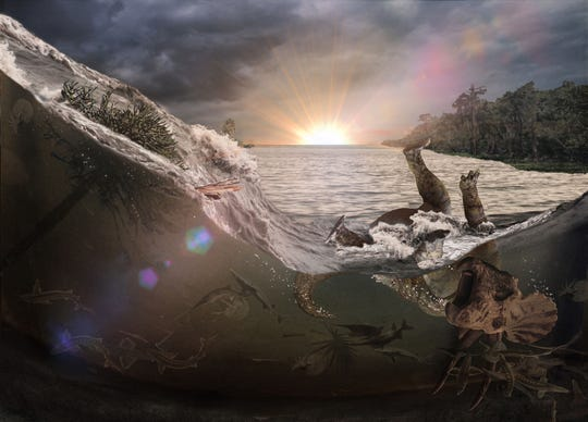 An artist's conception of the final moments of a group of animals that were killed a few minutes after an asteroid hit the Earth 66 million years ago.