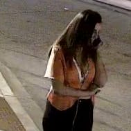 Video shows moment USC student Samantha Josephson enters car Nathaniel Rowland allegedly drove
