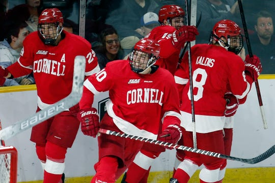 Cornell's Beau Starrett (10) celebrates his goal during the first period of an NCAA Division I East Regional semifinal men's hockey game against Northeastern in Providence, R.I., Saturday, March 30, 2019. (AP Photo/Michael Dwyer)