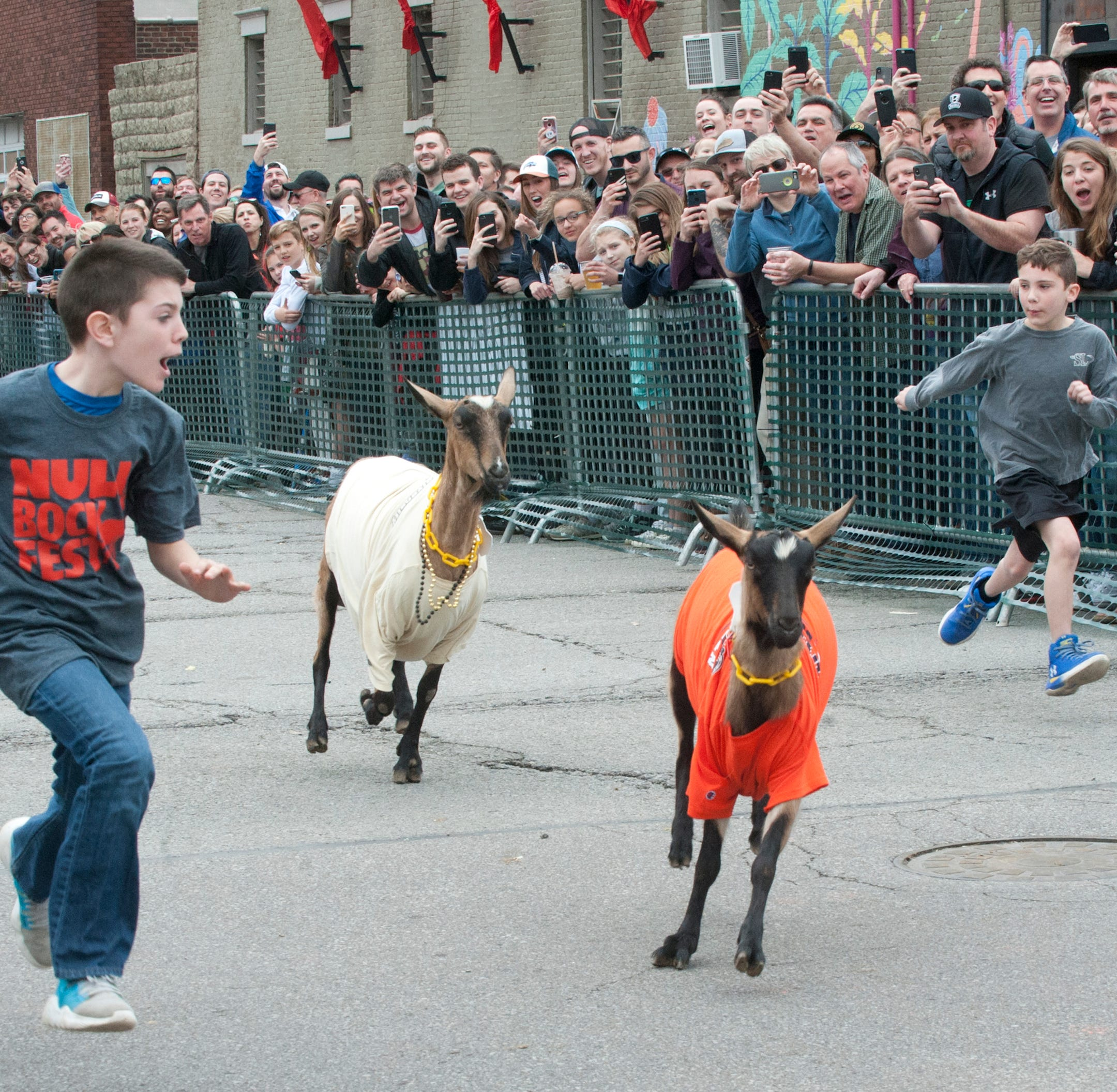 Beer, fun and goats (!) rule at NuLu Bock Fest in downtown Louisville