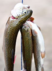 The opening day of the statewide trout season in Pennsylvania is still tentatively set for April 18.