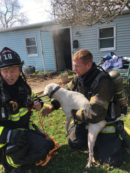 Firefighters rescued a dog from a burning home near New Castle Saturday. A 17-year-old boy was sent to the hospital for smoke inhalation, firefighters said.